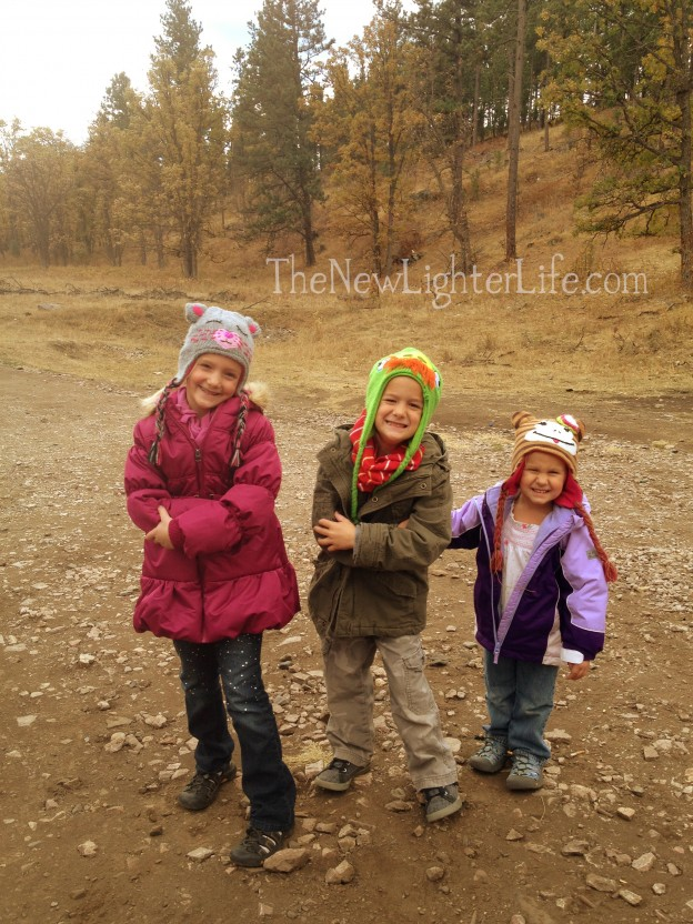 Black Hills during fall