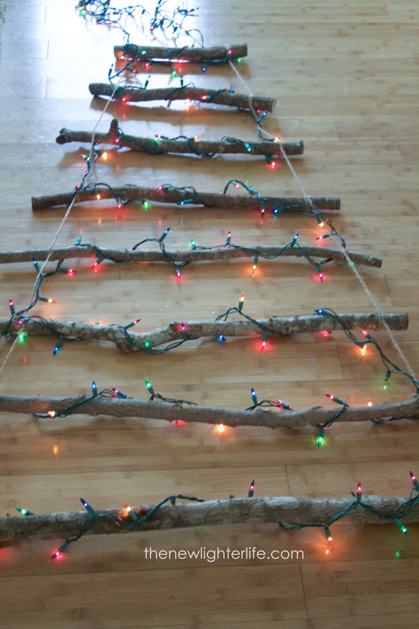 twig tree wrapped with lights